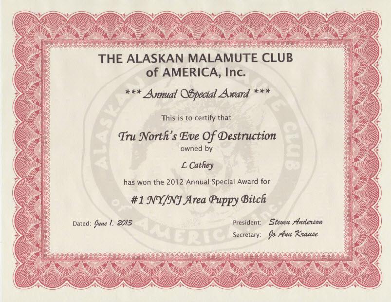 Evey_certificate_2012